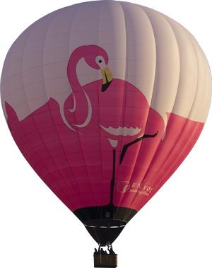 La montgolfière Flamant rose